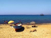 wczasy - Tunezja